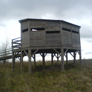 Construire ou faire construire un observatoire de faune