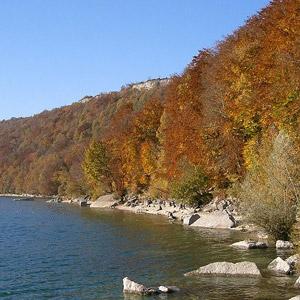 Observer les oiseaux du lac de Chalain (Jura)