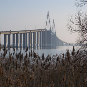 Observer les oiseaux dans l'estuaire de la Loire