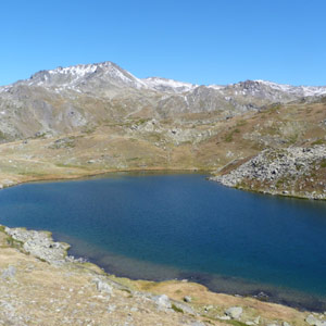 Promenades ornithologiques dans la haute vallée de la Clarée (Hautes-Alpes)
