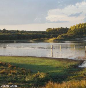 Le domaine de Careil (Ille-et-Vilaine), la renaissance réussie d'un étang