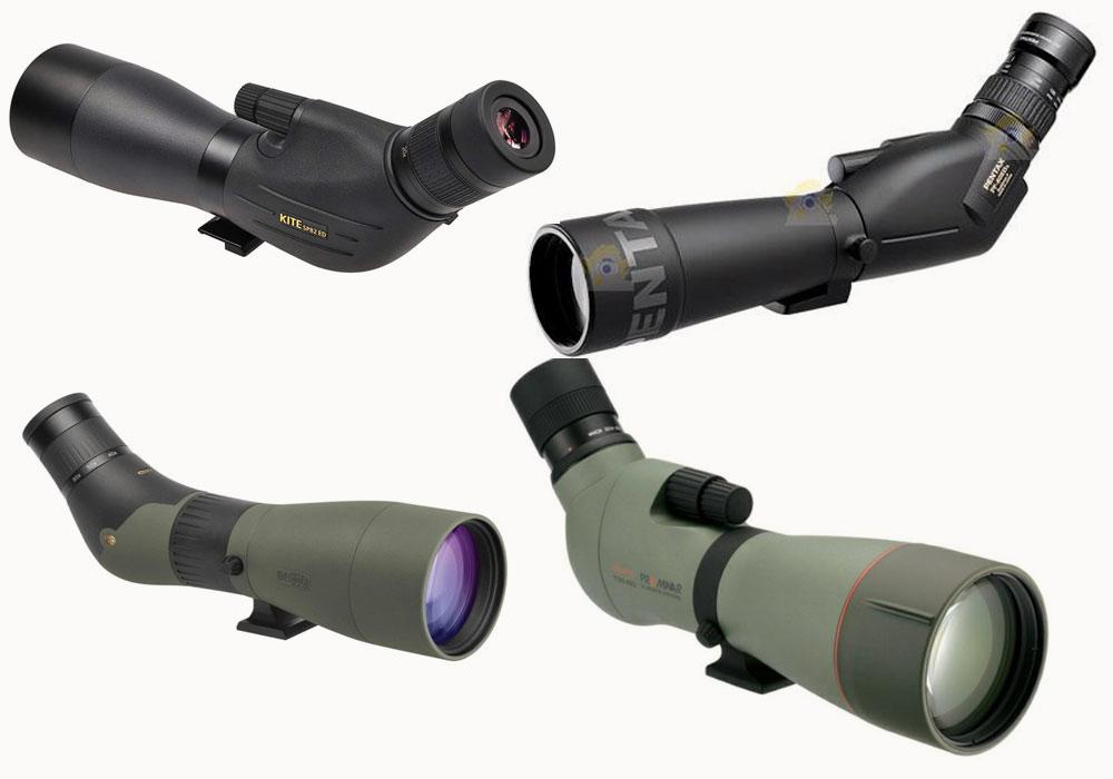 L'importance du champ de vision dans le choix d'une longue-vue et une sélection de modèles | Ornithomedia.com