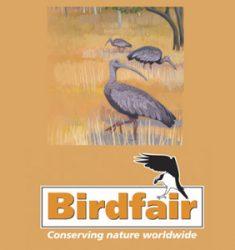 British Birdwatching Birdfair 2019