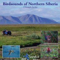 Birdsounds of Northern Siberia (MP3 CD)