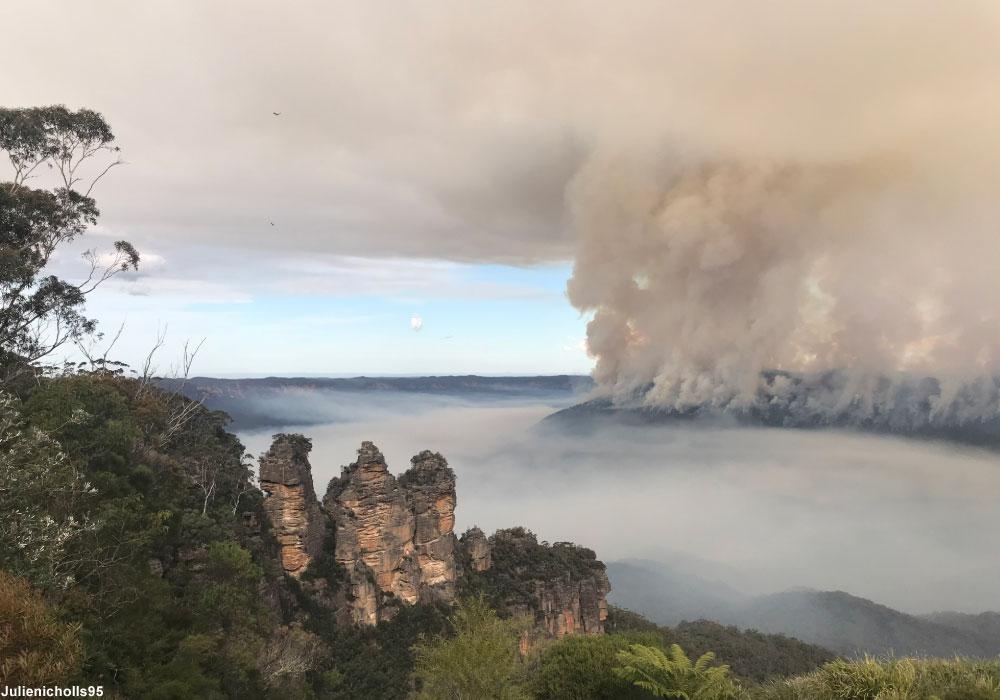 Les effets des incendies sur les oiseaux forestiers du sud-est de l'Australie | Ornithomedia.com
