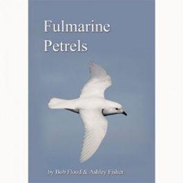 Fulmarine Petrels (DVD)