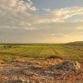 Vue du Roc de Conilhac (Aude)