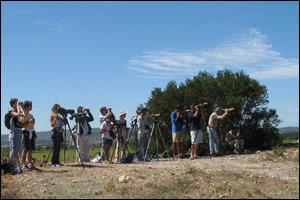 Observateurs sur le Roc de Conilhac en août 2006